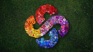 DP_Knolling_Flowers_sm