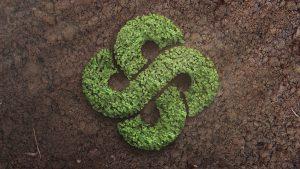 DP_knolling_seedlings_sm